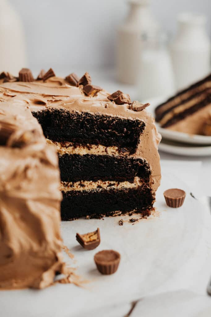 A chocolate cake with a peanut butter filling and chocolate frosting, the cake has been cut and you can see the inside.