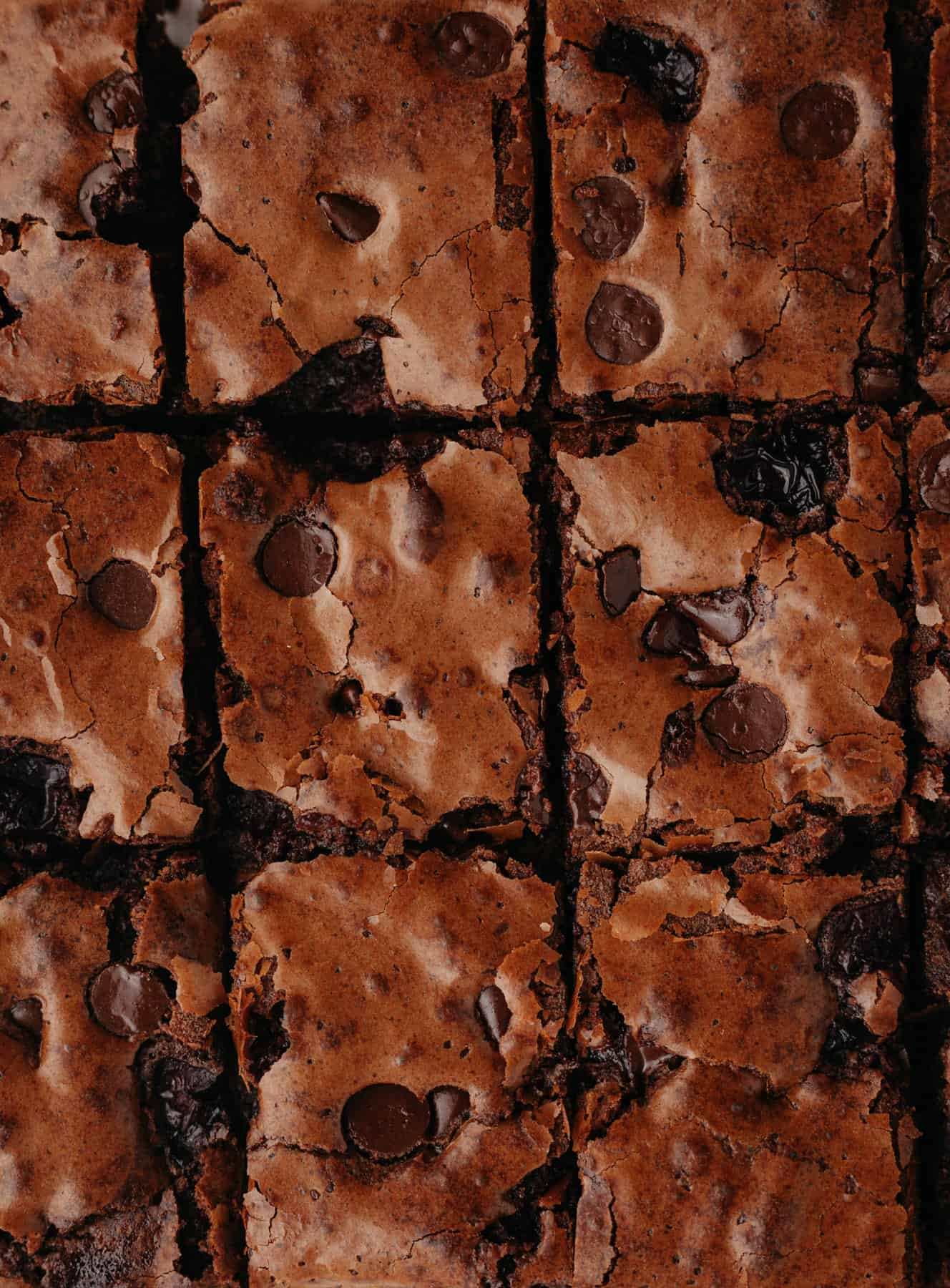 A close up of brownies that have been slied.